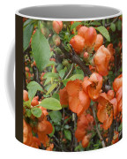 Japanese Quiche Blossoms Coffee Mug