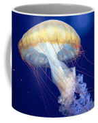 Japanese Sea Nettle Chrysaora Pacifica Coffee Mug