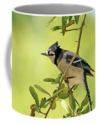 Jay In Nature Coffee Mug