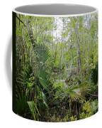 Jean Lafitte National Preserve Swamp Louisiana Coffee Mug