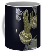 Jellyfish Of Aquarium Of The Bay San Francisco Coffee Mug