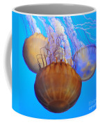 Jellyfish Trio Coffee Mug