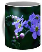Jewel In The Shadows Coffee Mug