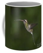 Jewel On Wings.. Coffee Mug
