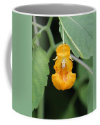 Jewel Weed Blossom Coffee Mug