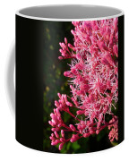 Joe Pye Weed Coffee Mug
