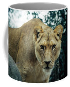 Join Me For Lunch? Coffee Mug