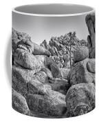 Joshua Tree 14 Coffee Mug
