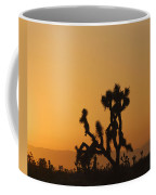 Joshua Tree At Sunset Coffee Mug
