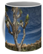 Joshua Tree In Joshua Tree National Park No. 279 Coffee Mug