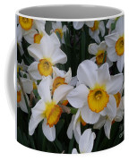 Joyful Jonquils Coffee Mug