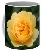 Julia Child Floribunda Rose Coffee Mug