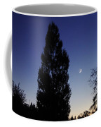 Julian Night Sky 2013 A Coffee Mug