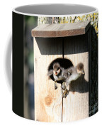 Jump Day Coffee Mug