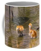 Jump In. The Water Is Fine Coffee Mug