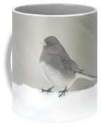 Junco 2 Coffee Mug