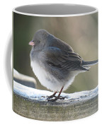 Junco On Board Coffee Mug