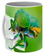 June Bug Fig Beetle Coffee Mug