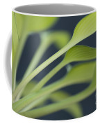June Plantain Lily Close Ups Coffee Mug