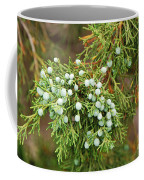 Juniper Berries Coffee Mug
