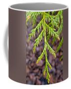 Juniper Leaf Coffee Mug