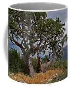Juniper Tree On The Edge Of The Verde Valley Coffee Mug