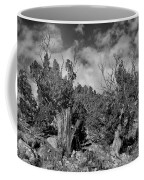 Juniper Trees At The Ghost Ranch Black And White Coffee Mug