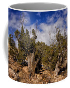 Juniper Trees At The Ghost Ranch Color Coffee Mug