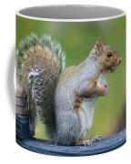 Just An Observation Coffee Mug