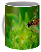 Just Beecause Coffee Mug