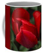 Just One Drop Coffee Mug