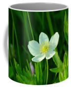 Just One Pretty Flower Coffee Mug