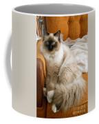 Just Sitting Coffee Mug