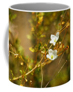 Just Two Little White Flowers Coffee Mug