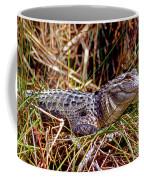 Juvenile American Alligator Coffee Mug
