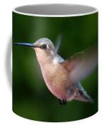 Juvenile Anna Hummingbird Coffee Mug