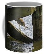 Juvenile Black Crowned Night Heron Coffee Mug