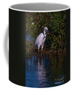 Juvenile Little Blue With Lobster 1 Coffee Mug