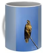 Juvenile Perch Coffee Mug