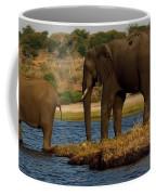 Kalahari Elephants Preparing To Cross Chobe River Coffee Mug