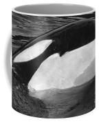 Kandu Orca Seattle Aquarium 1969 Pat Hathaway Photo Killer Whale Seattle Coffee Mug