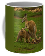 Kangaroo Nursing Its Joey Coffee Mug