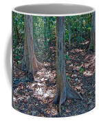 Kapok Trees Along The Trail In Manual Antonio National Preserve-costa Rica Coffee Mug