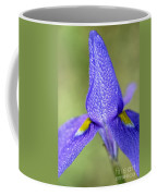 Karoo Iris 2 Coffee Mug