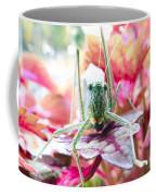 Katydid Face Coffee Mug