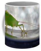 Katydid Reflection Coffee Mug