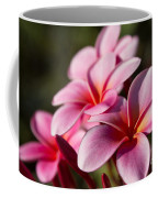 Kaupo Summer Treasure Coffee Mug