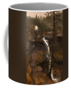 Kauterskill Falls Coffee Mug