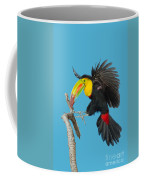 Keel-billed Toucan About To Land Coffee Mug
