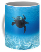 Keiki Turtle Coffee Mug by Sean Davey
